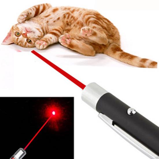 猫 レーザーポインター